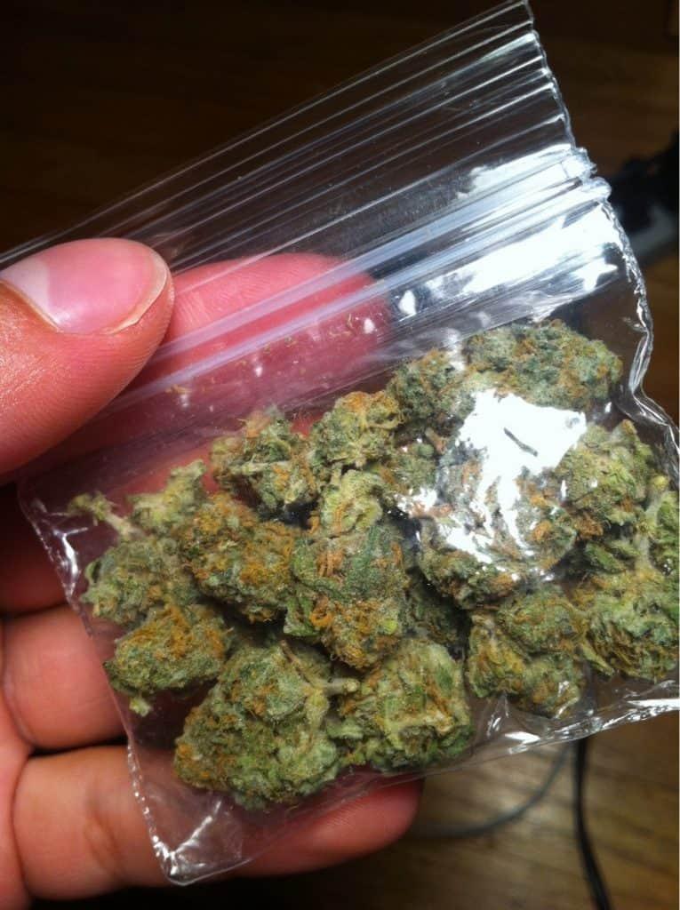 weed dealer bag